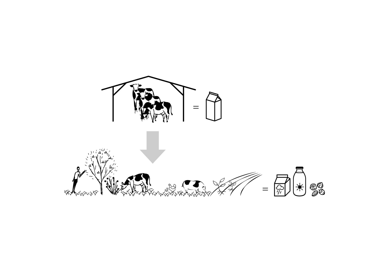 Melk en Noot Brood&Spelen de Melkbrouwerij biologische boerderij Rick Huis in 't Veld5