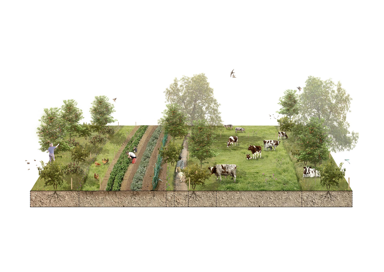 Melk en Noot Brood&Spelen de Melkbrouwerij biologische boerderij Rick Huis in 't Veld7